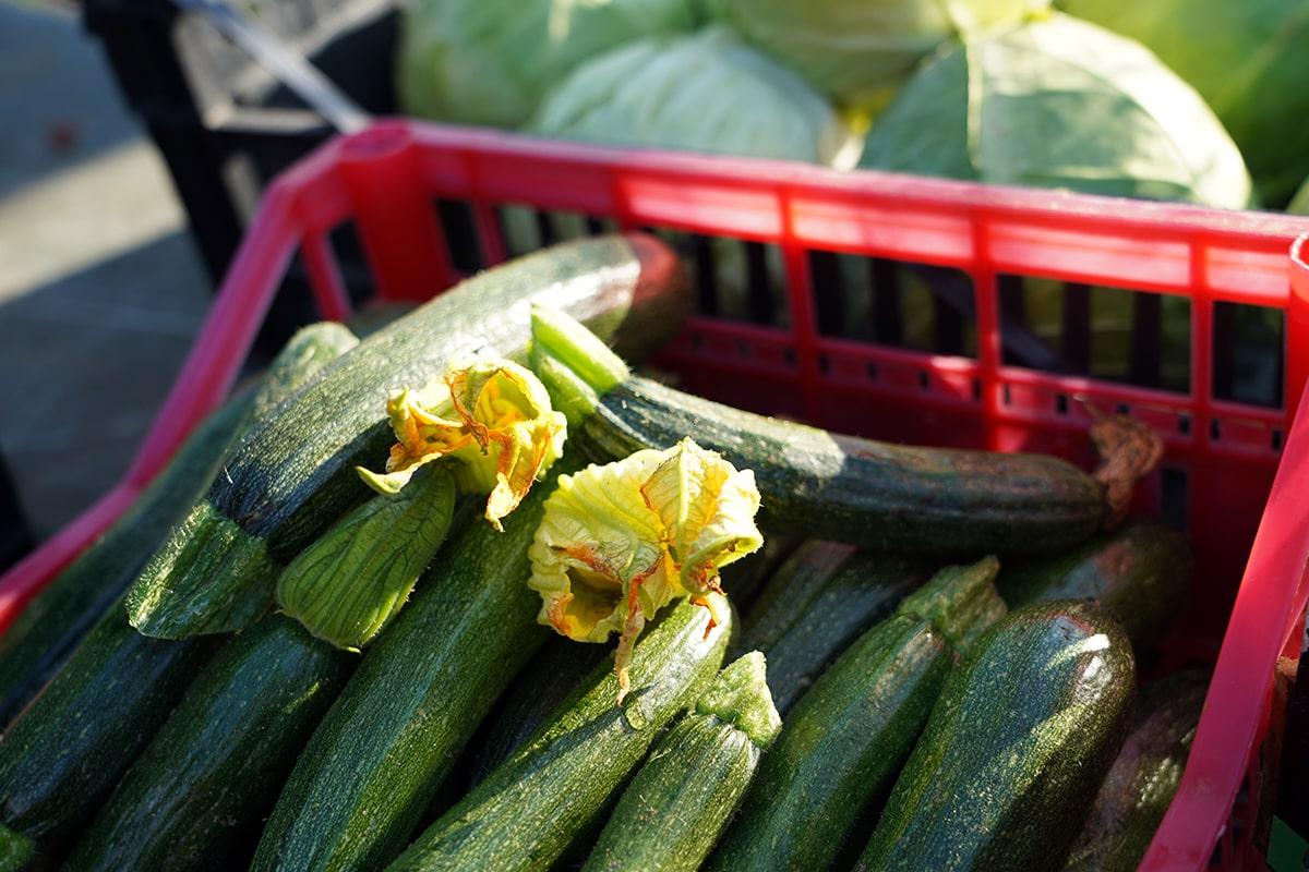 zucchine e fiori di zucca ristorante lecce